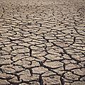 le département de la Manche en situation d'alerte sécheresse - lundi 16 septembre 2019
