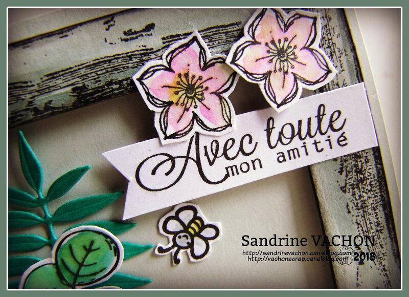 Sandrine VACHON défi 535 combo (2)