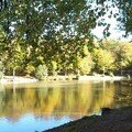 Le 1er étang