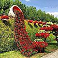 L'art et les fleurs ...