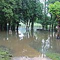 Inondations de verdure