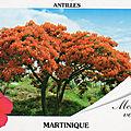 GUADELOUPE-DESIRADE-MARIE/GALANTE-MARTINIQUE-ST BARTHELEMY-LES SAINTES-St MARTIN-