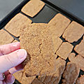 ...<b>Speculoos</b> sans oeufs, facile, rapide et inratable...