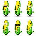 Le Conseil d'Etat rouvre la porte au maïs transgénique de Monsanto en France