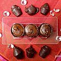 Petits chocolats à la <b>pistache</b>