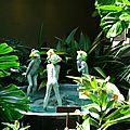 jardin botanique (442).JPG