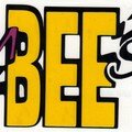 Présentation du Team BEE Sport