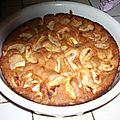 Gâteau aux pépites de chocolat et aux pommes