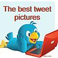 The best tweet pictures!