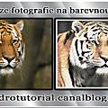 Konverze <b>fotografie</b> na barevnou skicu