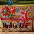 Mini album martinique