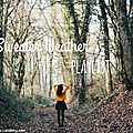 Sweater weather playlist! shawn mendes, meghan trainor, disclosure...