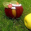 Pommes endimanchées...