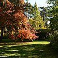 Festival des couleurs d'automne aux Grandes Bruyères