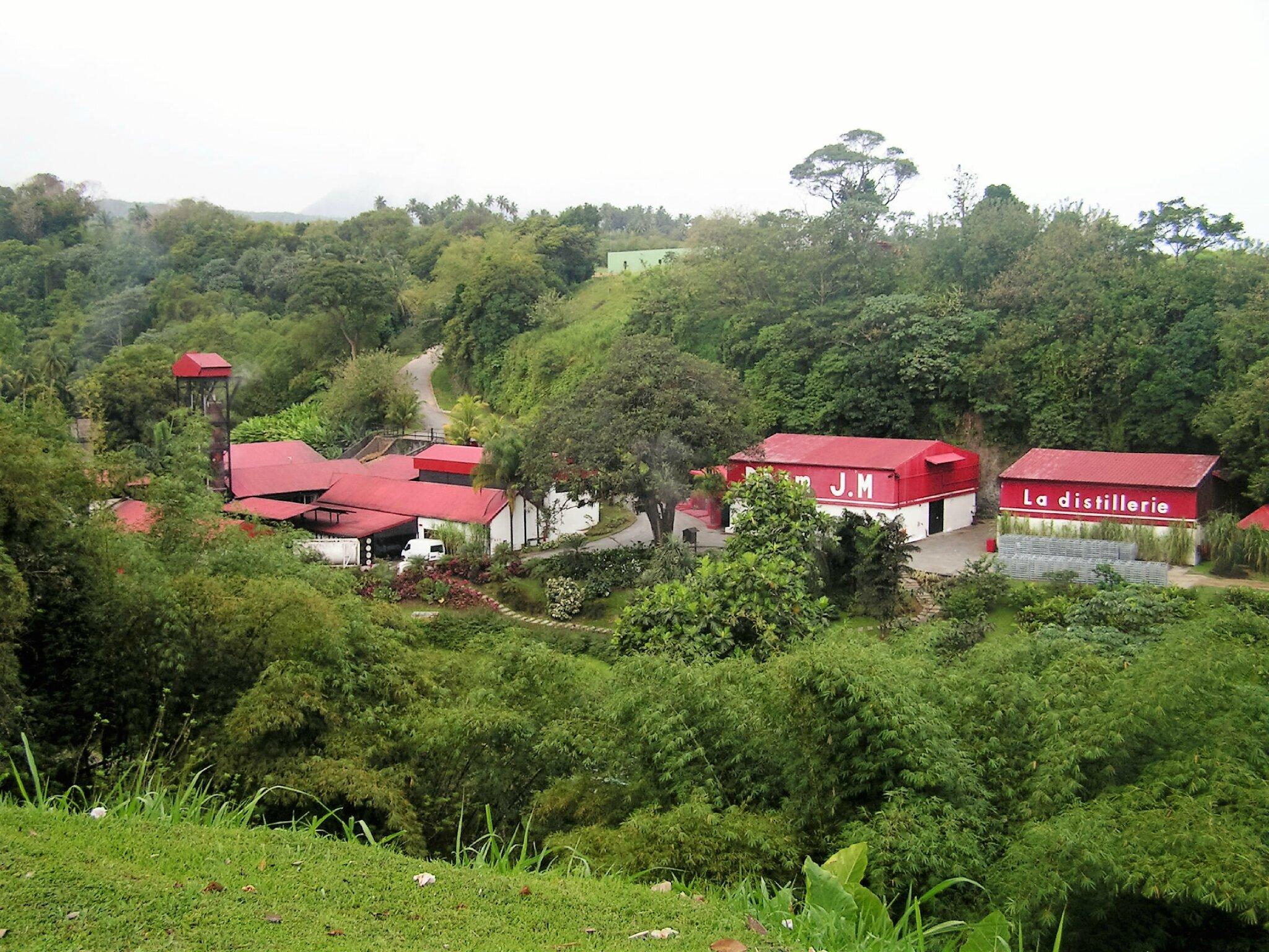 Le rhum agricole, fleuron de la Martinique