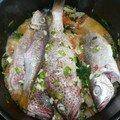 Blaff ou Court Bouillon de <b>poisson</b> de la Martinique