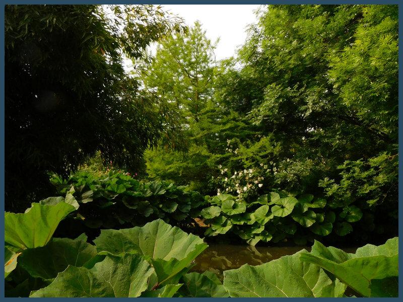 Jardins de Roquelin4