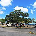 Rond-point à <b>Bridgetown</b> (Barbade)