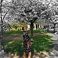 <b>Robe</b> <b>chemise</b> aux flamants | The shirt dress with flamengos