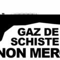 Gaz de schiste : Toréador peut continuer à forer en <b>Seine</b>-et-<b>Marne</b>