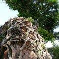 Temple de Sambor Prei Kuk, Kompong Thom