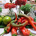 piment doux des landes - www.passionpotager.canalblog.com