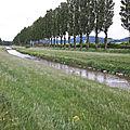 Chemin de Compostelle 02: Payerne-Lucens