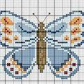Papillon N°5