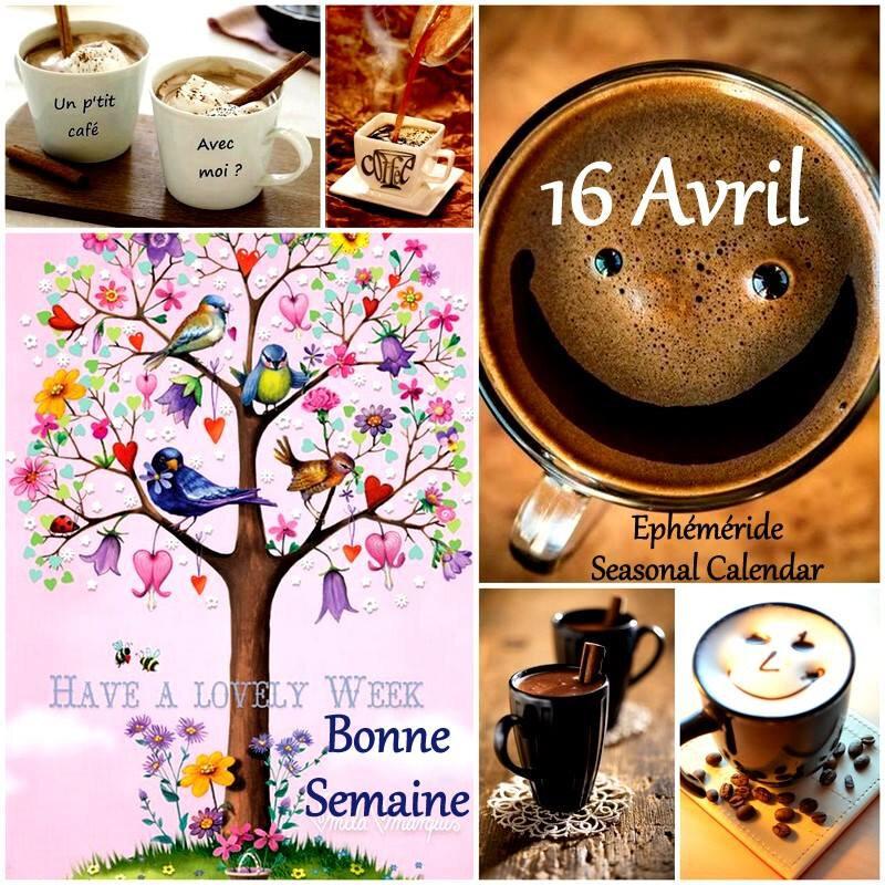 16 avril bonne semaine