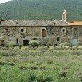 abbaye en pays catalan_02