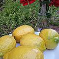 Dans mon jardin d'espagne, olé !