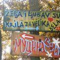 Serbie - autour d'Ivanjica