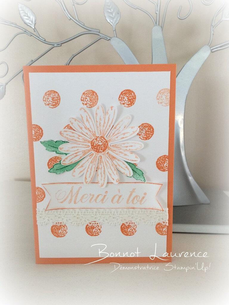 """Suite des cartes avec la collection 'Partager ce que vous aimez"""""""