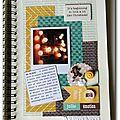 <b>Family</b> <b>Diary</b>: encore et encore...
