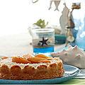 Gâteau san