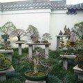 Le chinese Garden