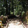 Chemin de la Cascade aux Ecrevisses