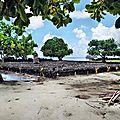 RAIATEA 14 - Plus grand marae de Polynésie 1