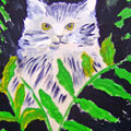 The cat in the ferns