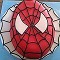 <b>spiderman</b>