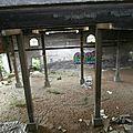 Vanneaux - 2014-07-26 - P7266377