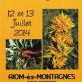 2014-La fête de la Gentianeà Riom és Montagne.