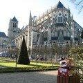 Bourges, cathédrale et packs de 24 (18)
