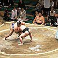 Tokyo - Tournois de Sumo