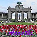 Triumphal Arch of Brussels with Tulips foreground