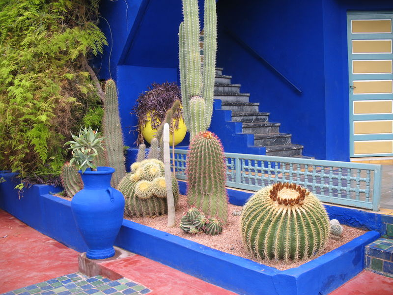 marrakech le jardin majorelle album photos casa breizh. Black Bedroom Furniture Sets. Home Design Ideas