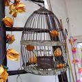 Pour faire le portrait d'un oiseau, peindre d'abord une cage (série bois)
