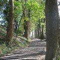 Les escaliers de Lorette