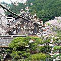 Notre voyage au japon - koyasan