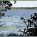 Lac 01091518